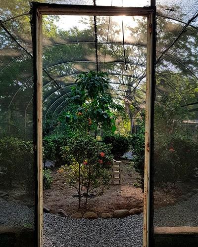 Descripción de foto - Entrada al mariposario de Guatebutterflies. - Descripción de foto - @guatebutterflies- instagram