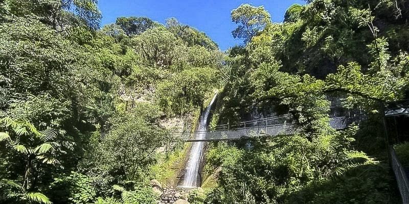 Mariposario Natural de Atitlán en Guatemala
