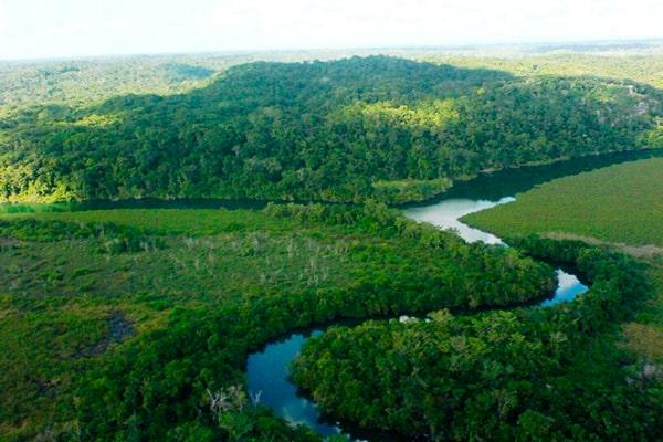 Descripción de foto - Vista aérea del Parque Nacional Laguna del Tigre, donde se observa el bosce y el río que cruza por él. - Crédito de foto - Guatesostenible
