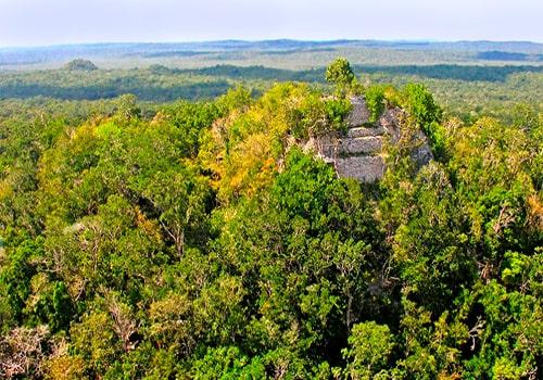 Descripción de foto - Vista de los bosques de Petén dentro de la Reserva de la Biósfera Maya. - Crédito de foto - Guate Maya