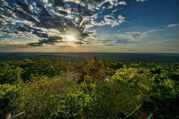Descripción de foto - Vista del atardecer en los bosques de la Biósfera Maya. - Crédito de foto - The frog Blog Español