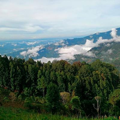 Descripción de foto - Vista el follaje y paisaje de las montañas de San Agustín Acasaguastlán. - Crédito de foto - kelisanchez19