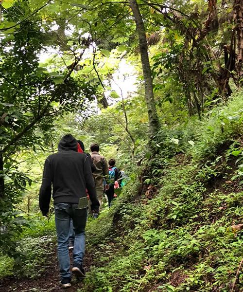 Descripción de la foto para personas con discapacidad visual: personas de espaldas caminando por un sendero que lleva a un barranco. (Crédito de foto: Jungla Urbana / Facebook)