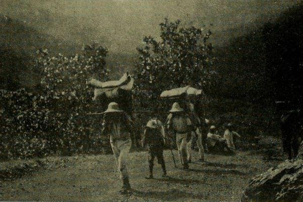 Por qué es tan importante la milpa en Guatemala.